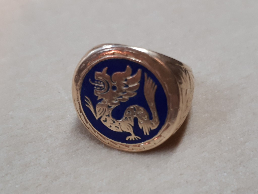Gold Ring for Man or Woman with Dragon in Enamel